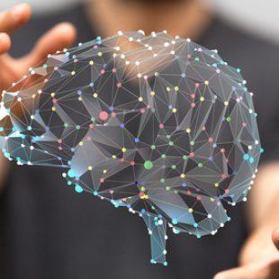 Młody mózg dzięki fosfatydyloserynie