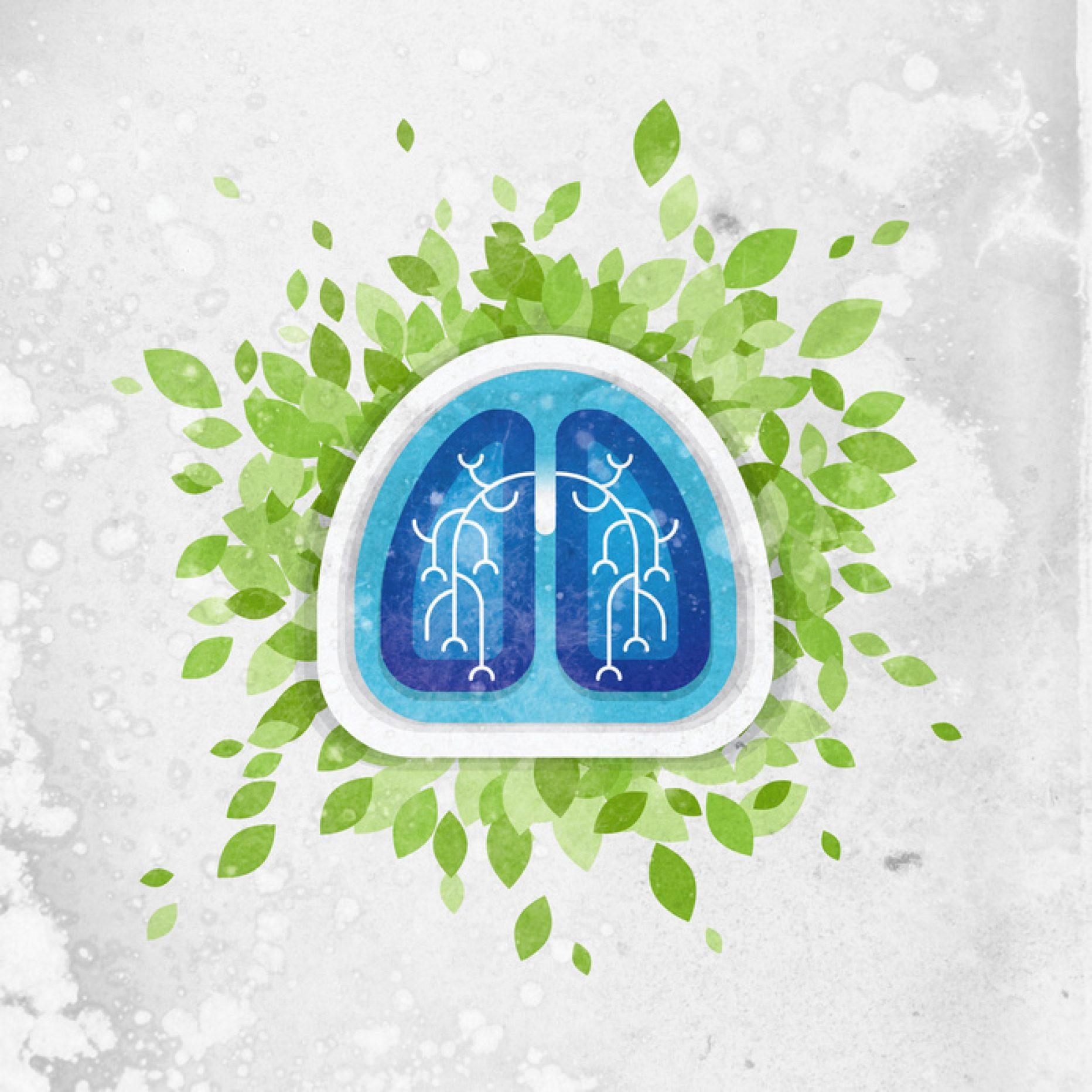Chlorella ochrania płuca palacza