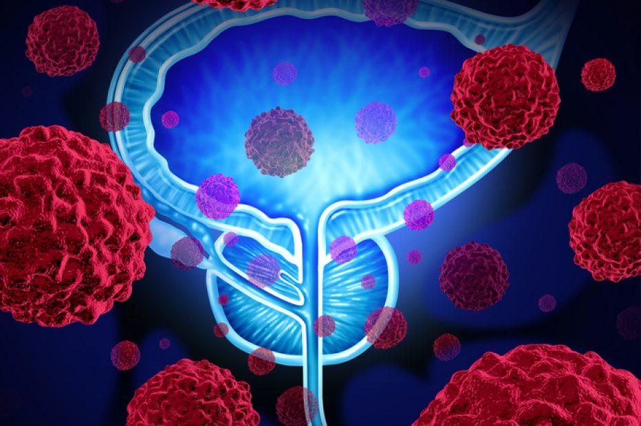Barwa ochronna prostaty – astaksantyna
