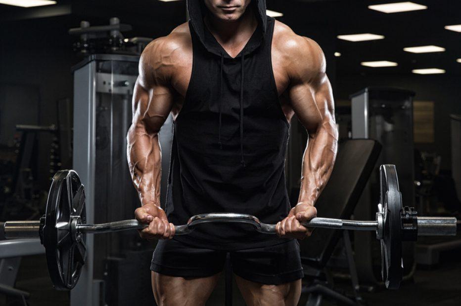 Berberyna i jej wpływ na mięśnie