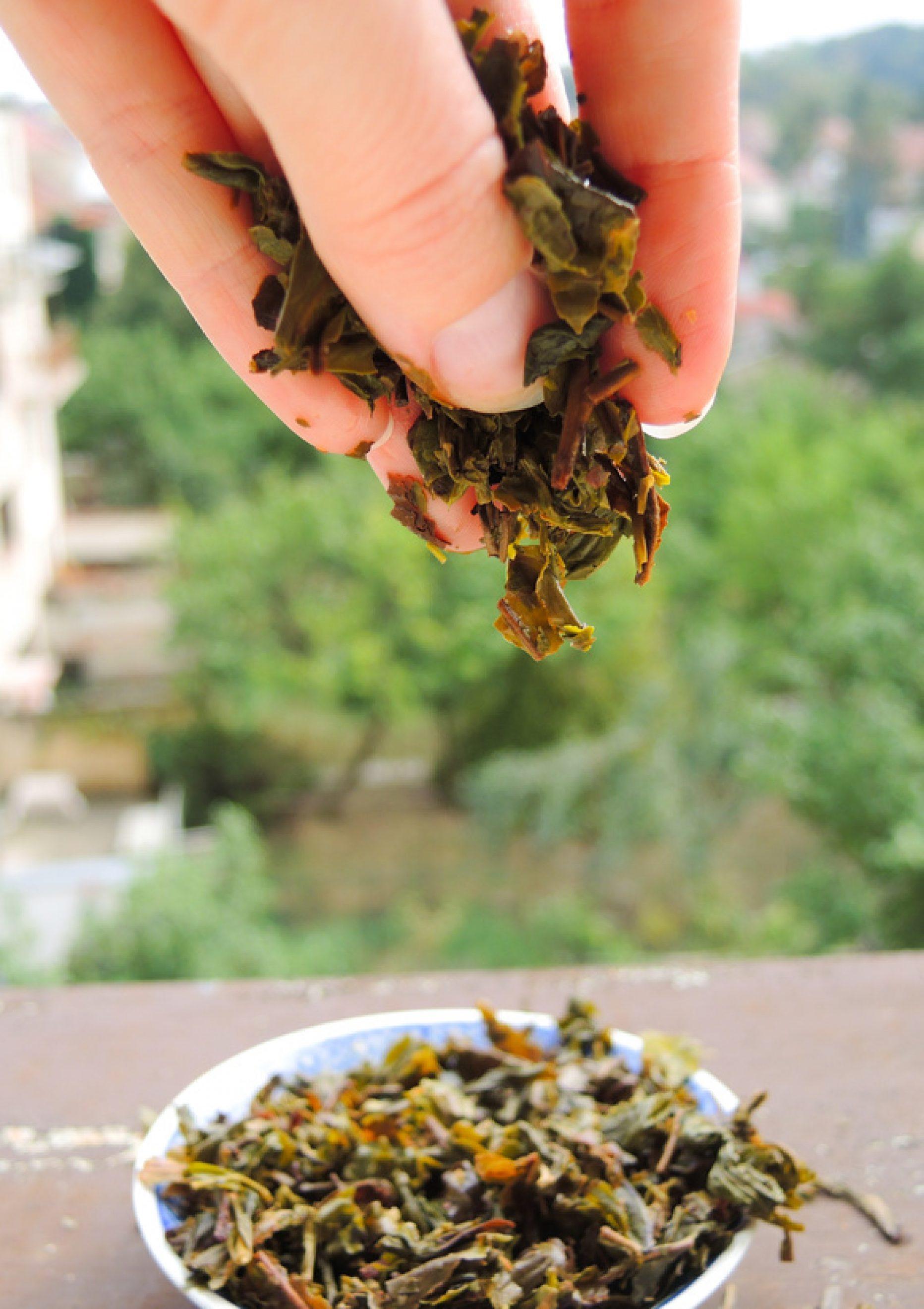 Dwie herbaty, jeden cel – prostata